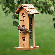 Perky-Pet® Tin Jay Wood Feeder - 2 lb Seed Capacity