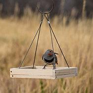 Perky-Pet® Hanging Tray Bird Feeder - 1.6 lb Seed Capacity