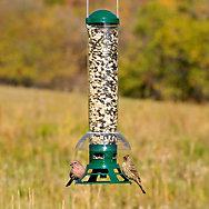 Perky-Pet® Squirrel Slammer Wild Bird Feeder - 3.5 lb Seed Capacity