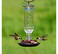 Perky-Pet® Clear Antique Bottle Glass Hummingbird Feeder - 10 oz Nectar Capacity