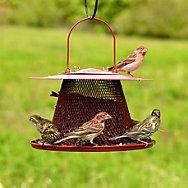 Perky-Pet® Red Cardinal Wild Bird Feeder - 2.5 lb Seed Capacity