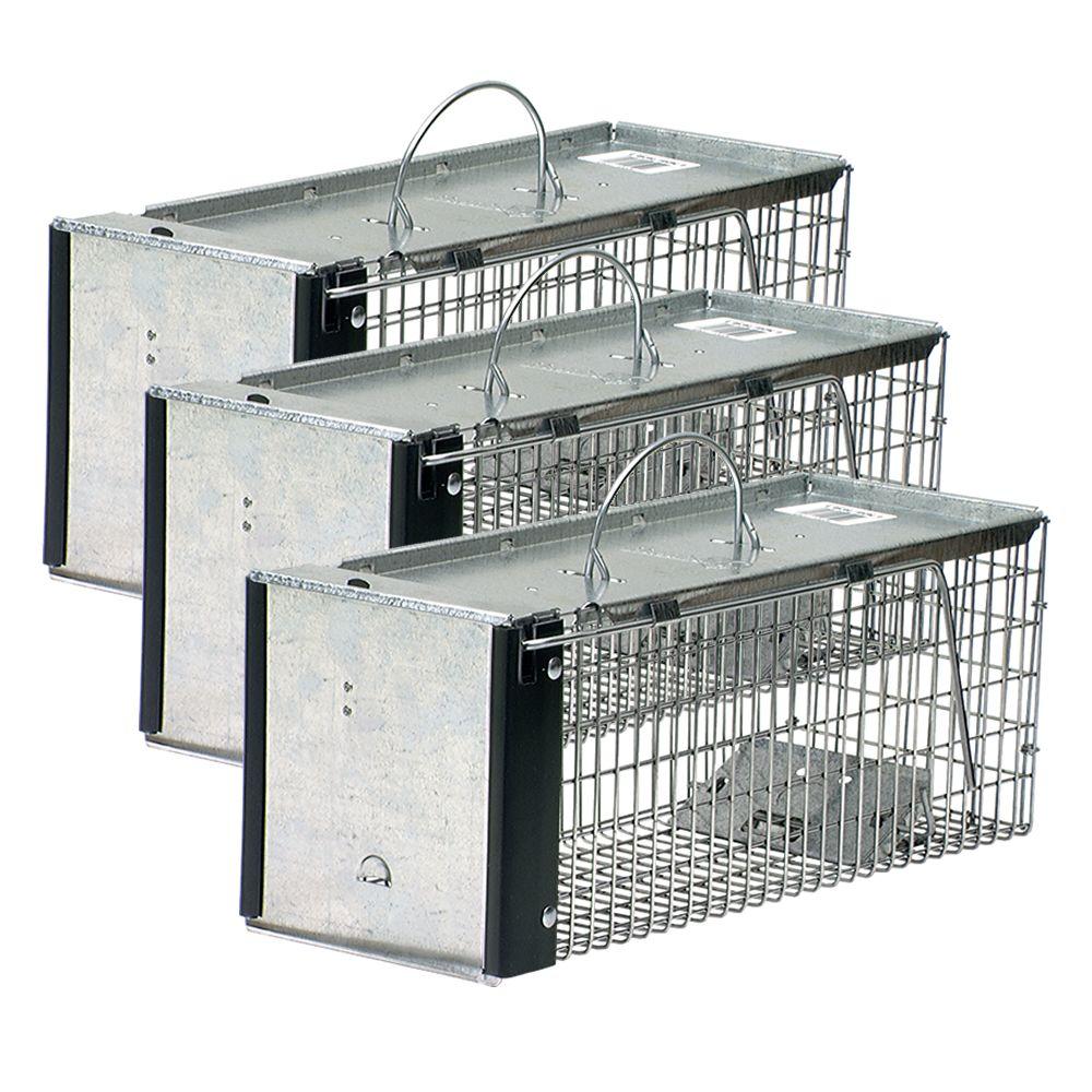 Extra Small 1 Door Live Animal 3 Pack Traps Havahart 174