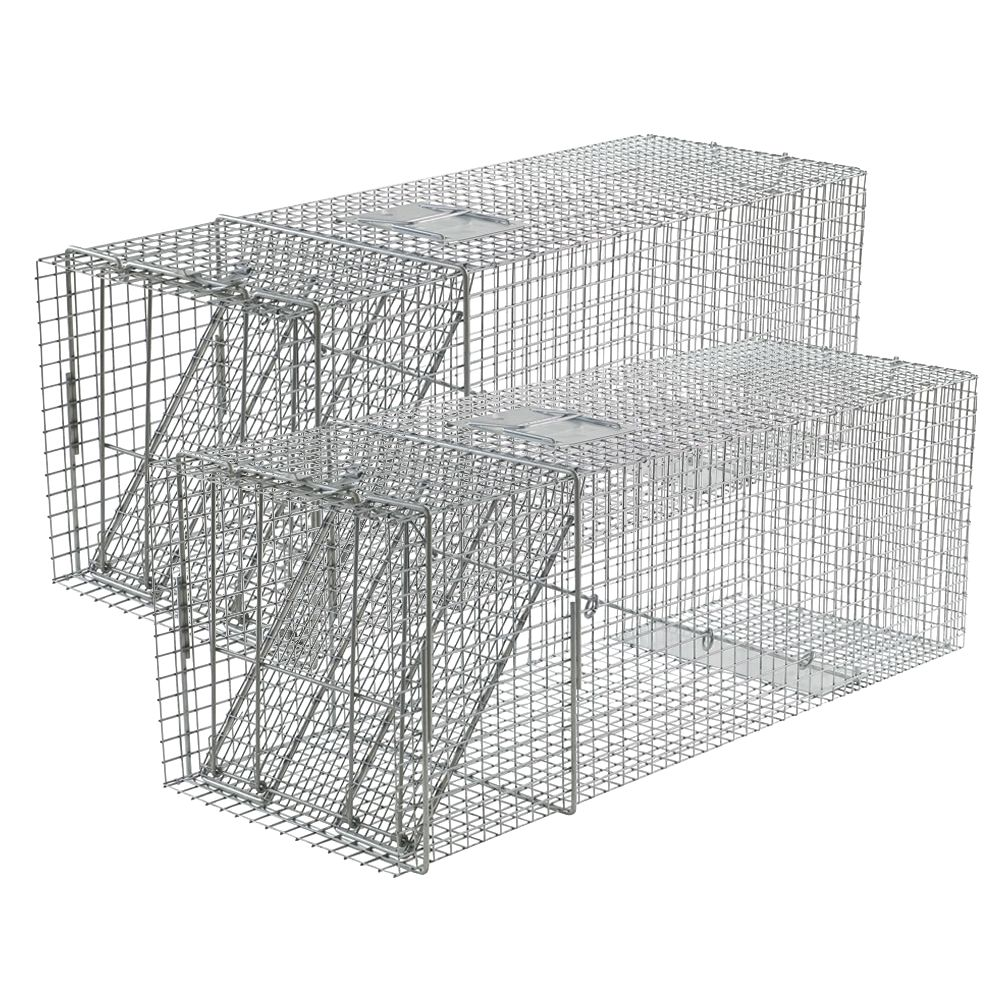 Extra Large 1 Door Trap 2 Pack First Rate Traps For
