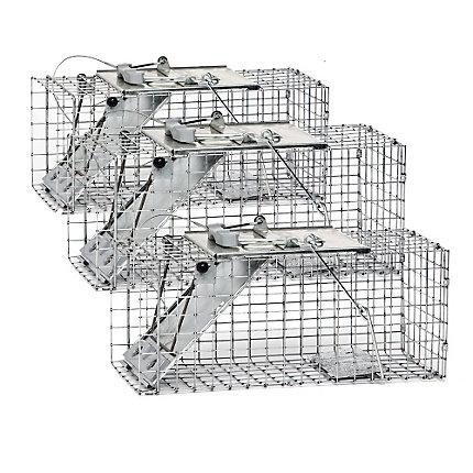 Havahart® Small 1-Door Easy Set® Trap - 3 Pack
