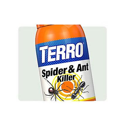 Terro Spider Ant Killer Our Best Spider Ant Spray