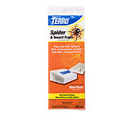 TERRO® Spider & Insect Trap - 12 Pack