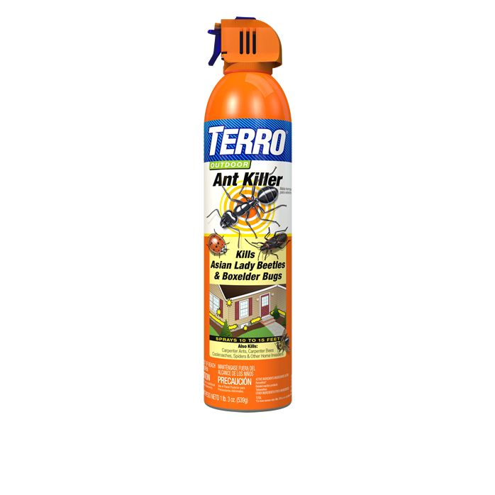 Terro Outdoor Ant Killer Spray Our Best Outdoor Ant Spray
