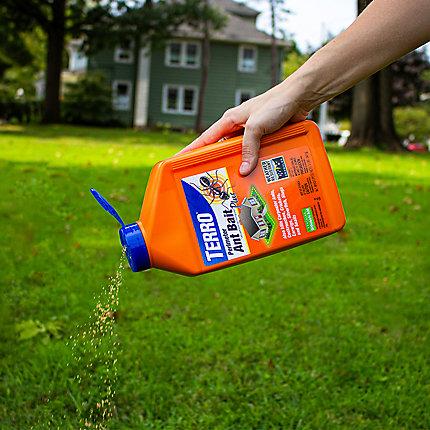Terro Perimeter Ant Bait Plus The Best Ant Killer For Lawns