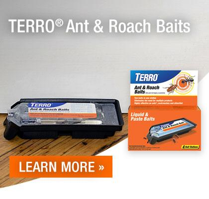 Terro Ant and Roach Baits